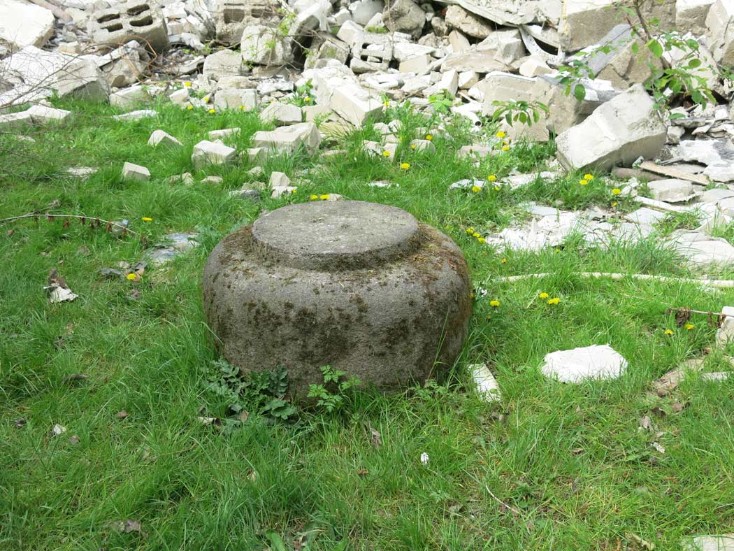 ein-beton-bovist.jpg